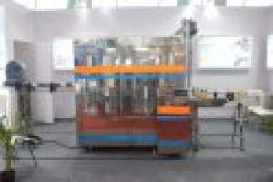 Pet Bottle Rinsing Filling Capping Machine (Capacity: 2500 - 4000 Bottles/hr)