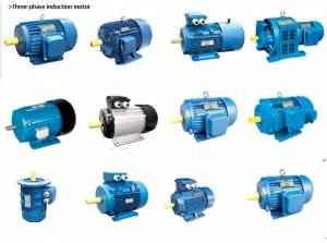 Electric Motor Std And Flameproof Manufacturers In Rul Dadna