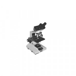 Research Binocular Microscope
