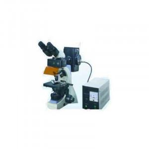 Fluorescent Microscope Manufacturers In Rajkot
