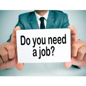 Jobs In Shashtrinagar